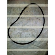 SD22 Кольцо 7-313 фото