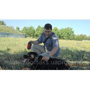 Выгул собак Харьков