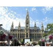 Тур в Вену фото