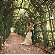 Церемония бракосочетания в Пражской ратуше фото