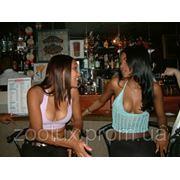 Развлечения в Доминикане фото