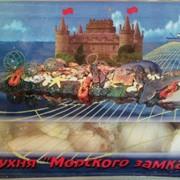 Кальмары молодые. фото
