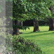Журнал о благоустройстве и ландшафтному дизайну фото