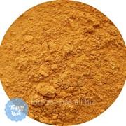 Краситель пищевой Кандурин Золотое сияние 10 гр., код кан1 фото