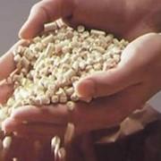 Меловая добавка на основе полипропилена Семпол PPR 120 в гранулах фото