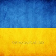 Экспорт в Украину