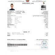 Виза в ОАЭ фото