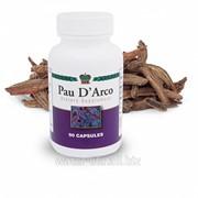 Антиоксидант Кора муравьиного дерева. Pau D'Arco Bark фото