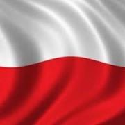 Услуги по переводу на польский фото
