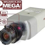 IP-видеокамера Beward BD4330H фото