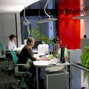 Ремонт офисов стандартный фото