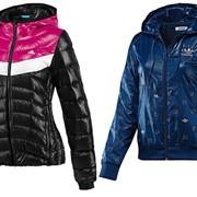 Куртки спортивные фото
