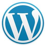 Website based on WordPress фото