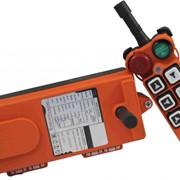Комплект промышленного радиоуправления UTING Telecontrol F21-Е2 фото