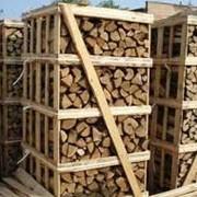 Закупка леса, древесины фото