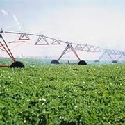 Услуги в земледелии фото