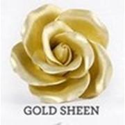 Пищевые красители ateco (сша) gold sheen, 20мл фото