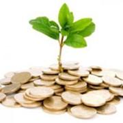 Инвестиции под 80 в год, услуги инвестиционные фото