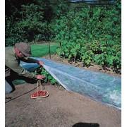 Агроволокно 30 г/м² (для укрытия любых растений на грядке или теплиц/парников). фото