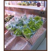 Пакет Конусный (трапециевидные пакеты для упаковки зелени) фото