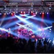 Организация и проведение концертов