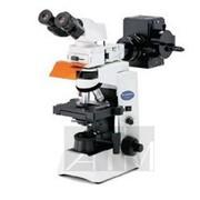 Специализированная комплектация микроскопа CX41 для исследования вируса АЧС фото