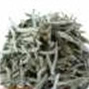 Зелёный элитный чай фото