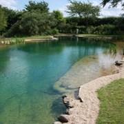 Строительство  прудов, водоемов фото