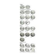 Набор дисков Kocateq HLC30012 фото