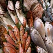Рыба морская свежая. Рыба морская олажденная. Рыба морская свежемороженная. Рыба морская соленная. Рыба морская копченная. фото