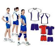 Форма волейбольная с коротким рукавом фото