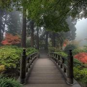 Ландшафтный дизайн фото