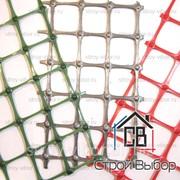 Сетка пластиковая С10 1.5х50 фото