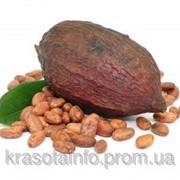 Масло какао 50 гр. фото