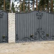 Ворота, арт. 863963 фото