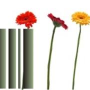 Автоматизация цветочного магазина фото
