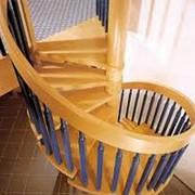 Быстрое и качественное изготовление деревянных винтовых лестниц фото