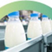 Молочная промышленность фото