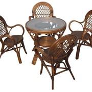 Обеденный комплект плетеной мебели Aria фото