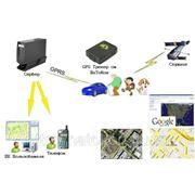 GPS / ГЛОНАСС Мониторинг — Система контроля местоположения фото