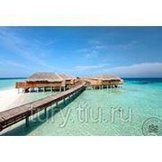 """Туры на Мальдивы.Отель """"Constance Moofushi Resort Maldives"""" 5*"""