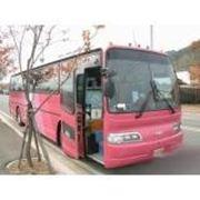 Заказать автобус ДЭУ фото