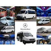 Заказ VIP-автомобилей, минивенов, микроавтобусов, автобусов в г. Краснодаре фото
