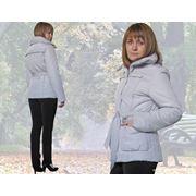 Куртка демисезонная 11503–1810 фото