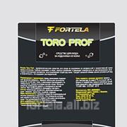 Профессиональное средство для ухода за изделиями из натуральной и искусственной кожи FORTELA TORO prof фото