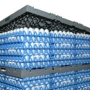 Система паллетирования и транспортировки яиц фото