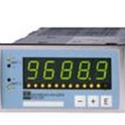 Индикаторы (цифровые измерители) серии RIA251