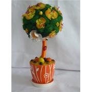 Топиарий - дерево счастья фото