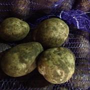 Свежий картофель с доставкой(+семенной) фото