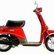 Мопед, скутер Suzuki RAN CA11A фото